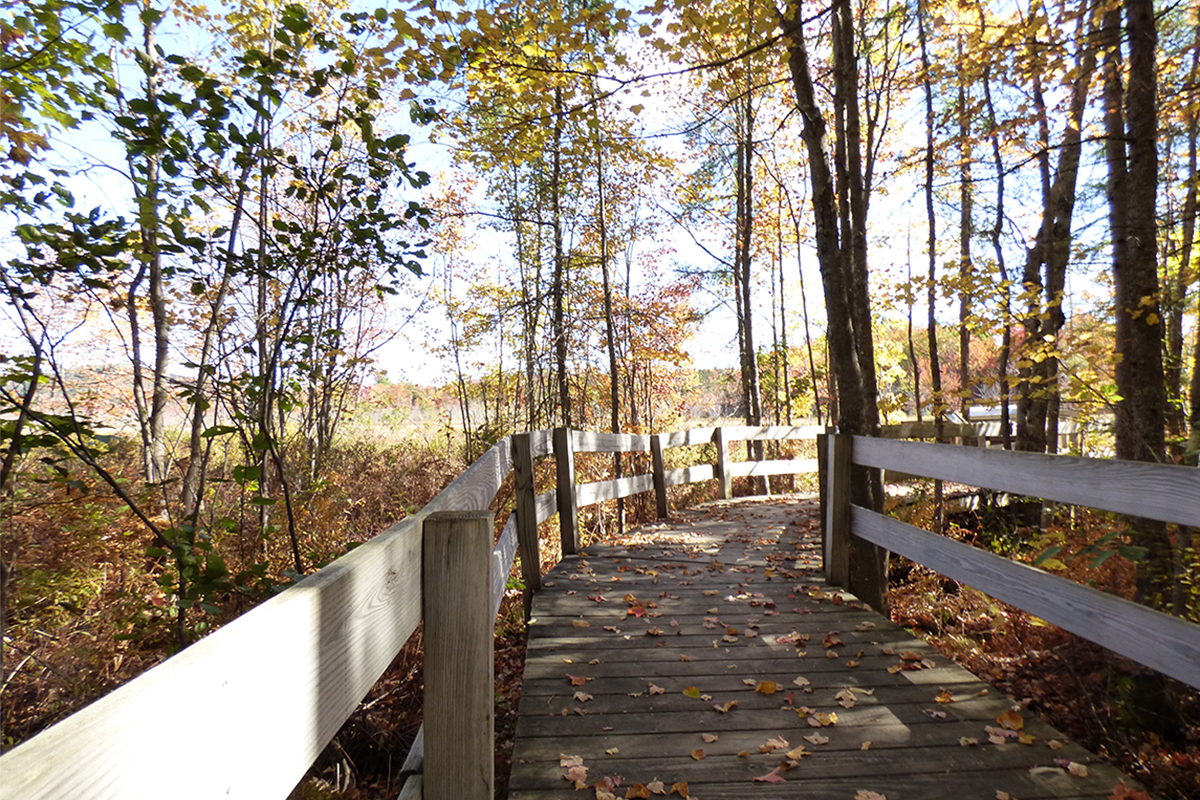 Boardwalk out to the overlook on the Sacandaga Community Pathway