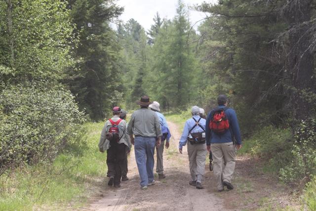 Field Trip at Massawepie Mire by Harold Hoople