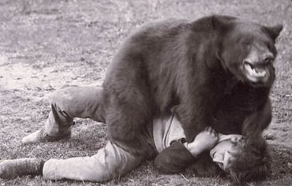 This is what most hunters experience when encountering a black bear.