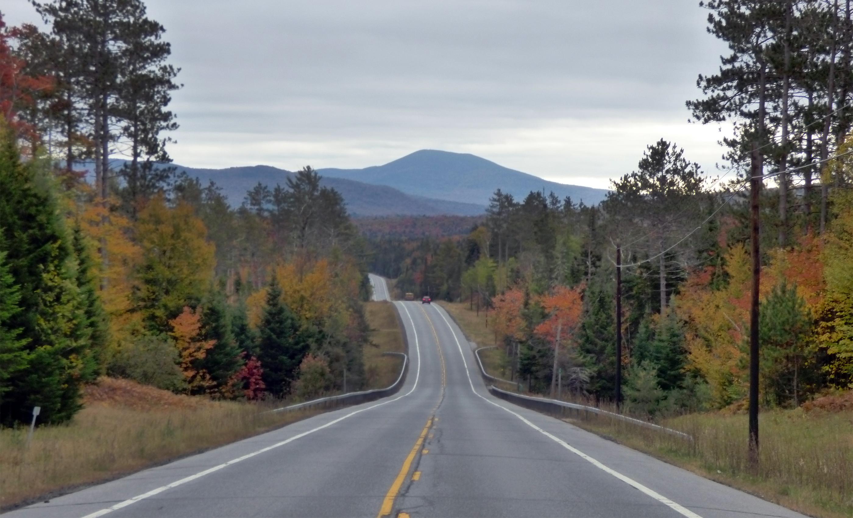 'Seventeen Mile Woods'