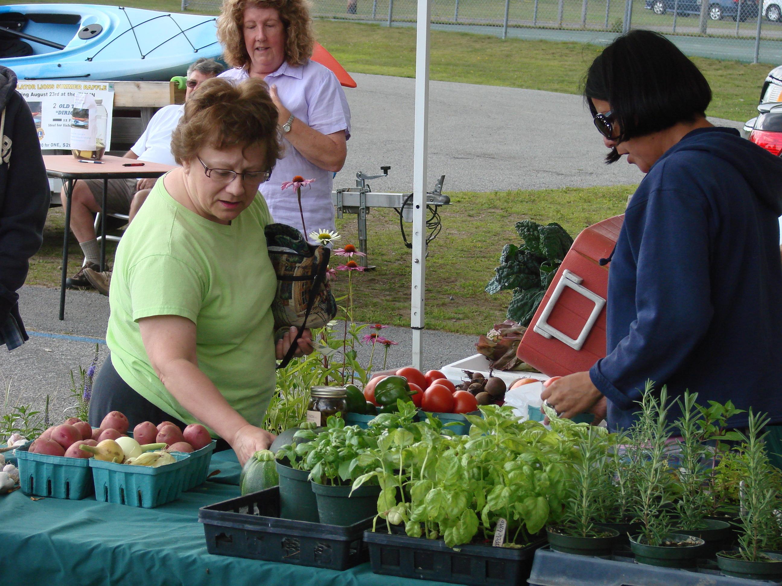 Speculator Farmers Market