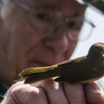 Bird Banding at the Crown Point State Historic Site