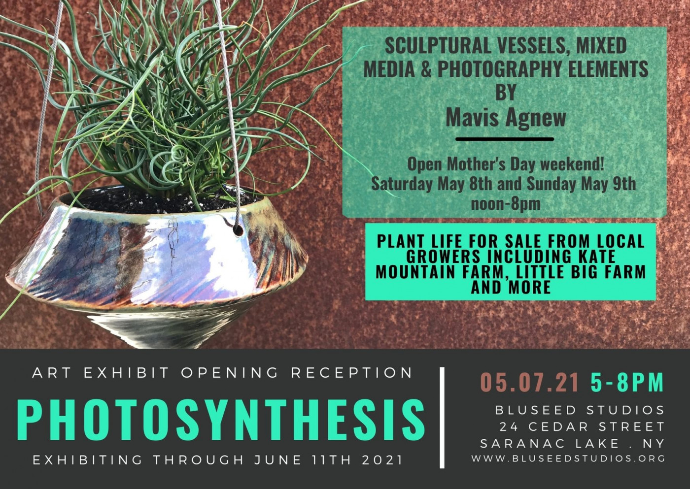 Photosynthesis by Mavis Agnew