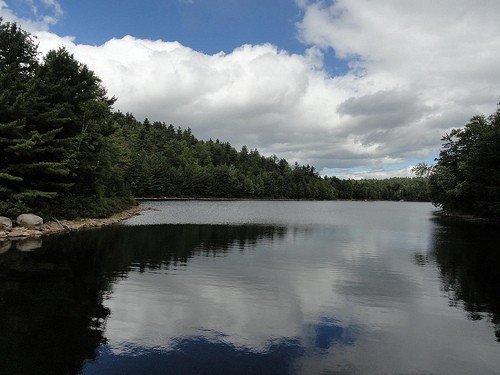 North Pond