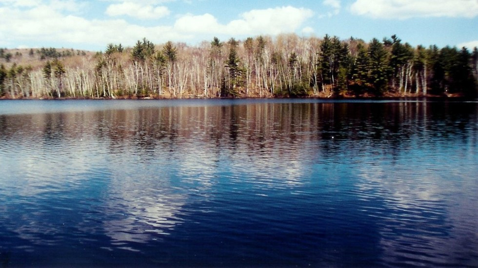 Russett Pond | Fishing