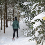 Dewey Mountain - What to Know