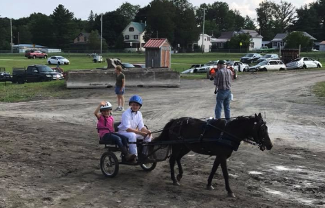 Mini and Pony Driving Clinic