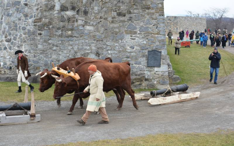 Fort Fever Program: Oxen, Sleds, and Drivers