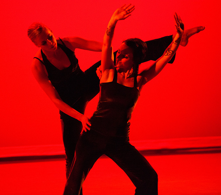 La Dansa Closing Reception