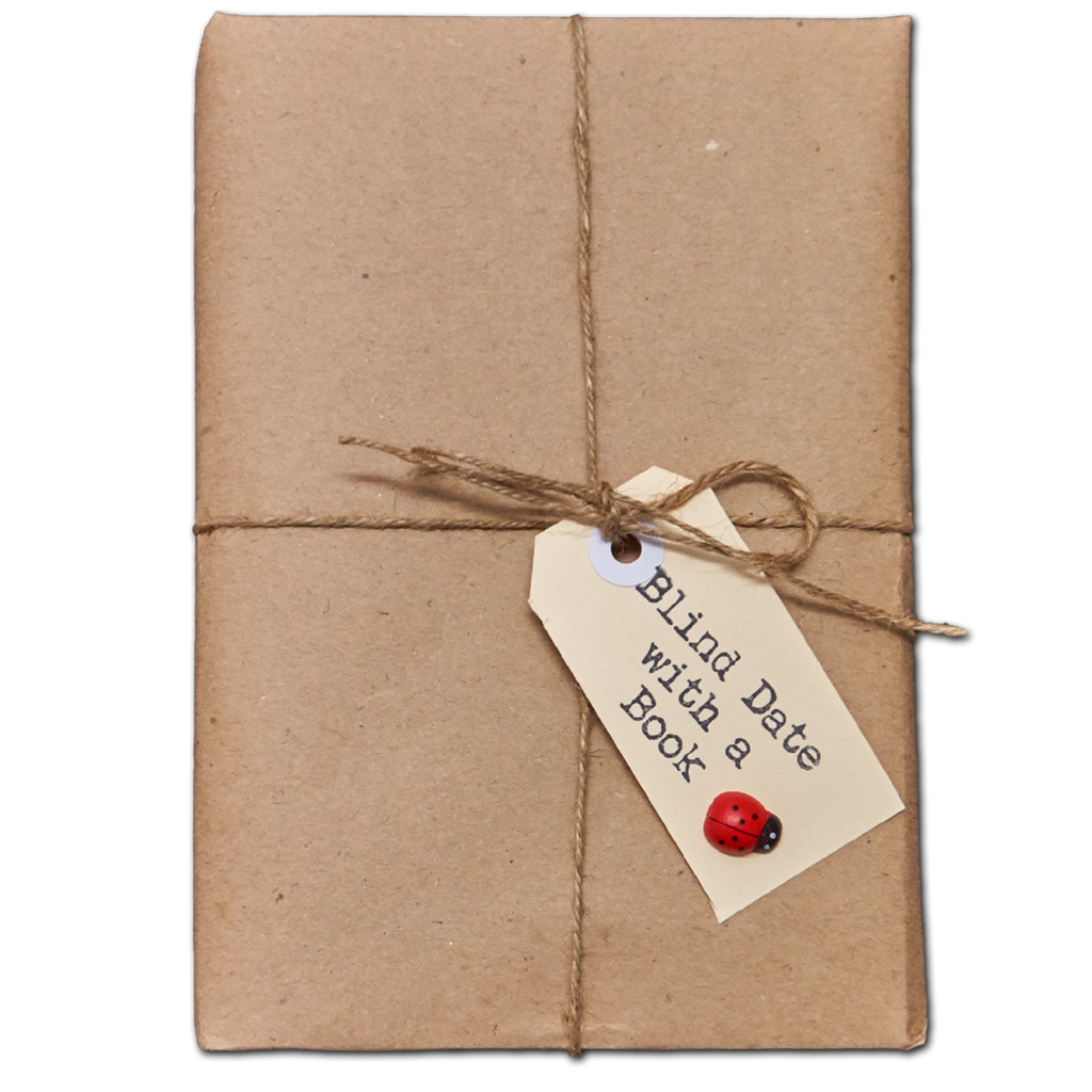 Blind Date With A Book! | A Valentines Day Game