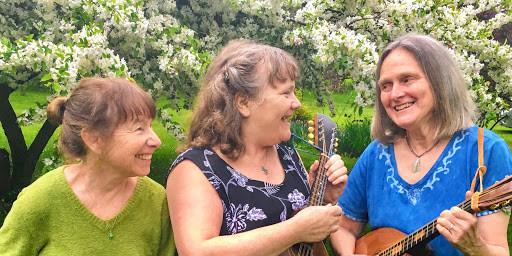 Ballard Park Summer Concert Series features Va-et-Vient
